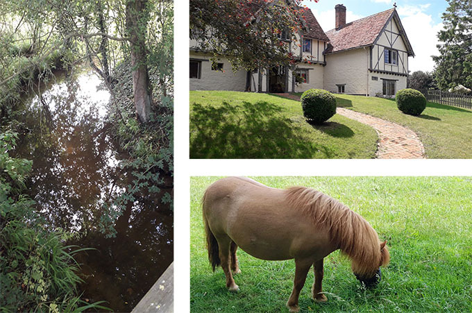 Grange farm, stream and pony