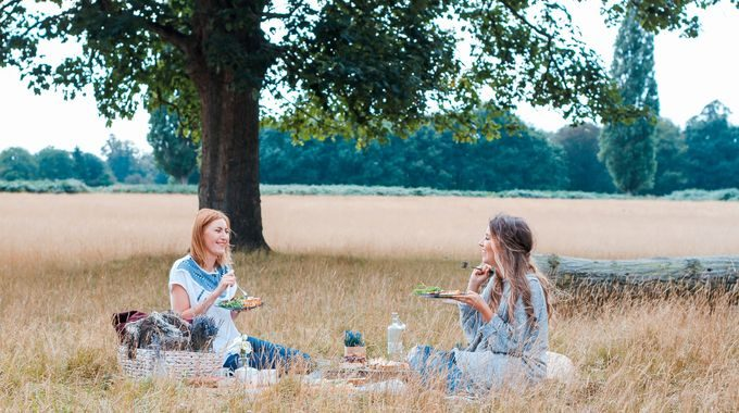 The Butterfly Guide To Successful Picnicking